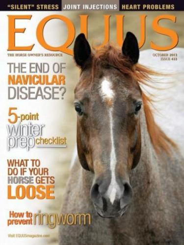 Best Price for Equus Magazine Subscription
