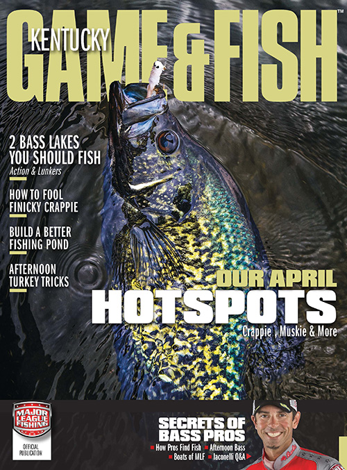 Kentucky game fish magazine subscription discounts deals for Kentucky fish and game