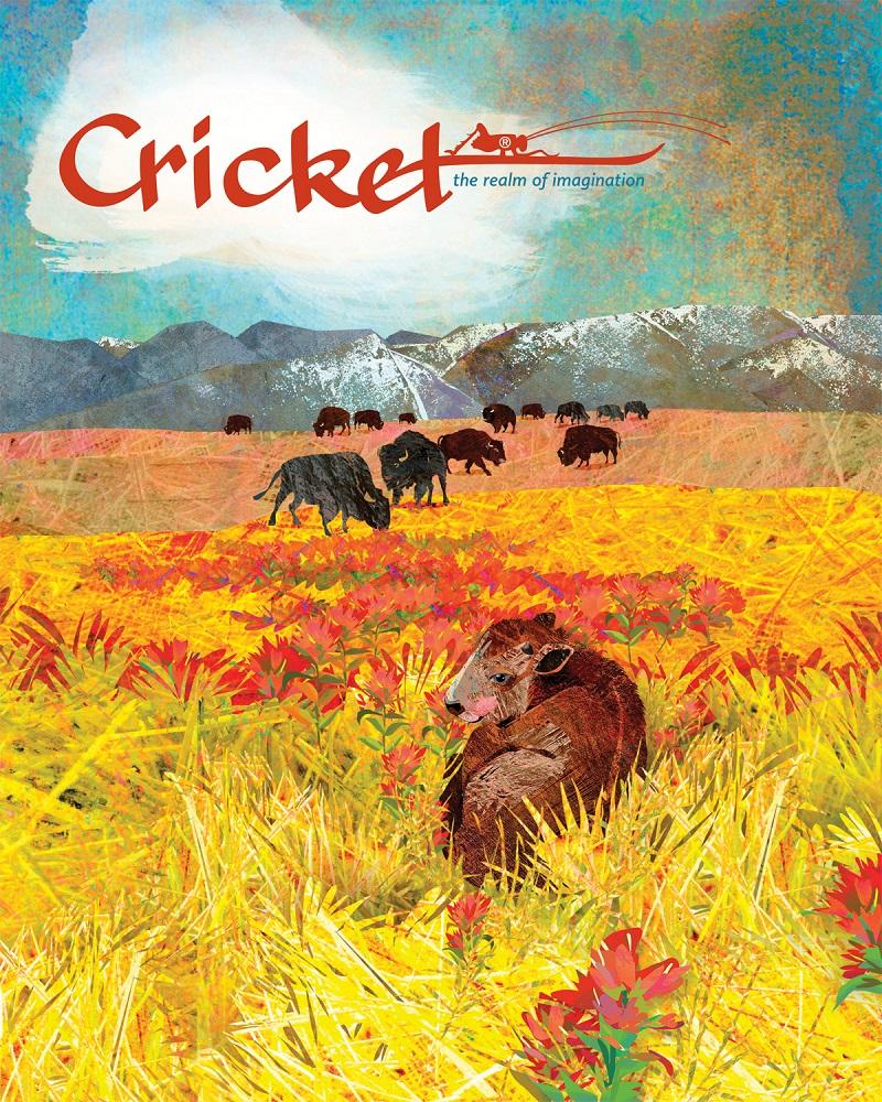 cricket magazine for kids