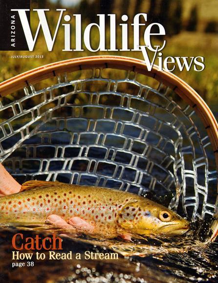 Arizona Wildlife Views Magazine