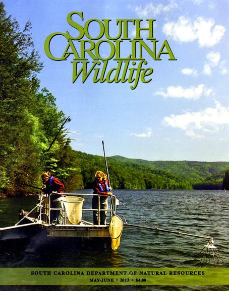 South Carolina Magazine