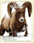 Wyoming Wildlife Magazine - 2014-03-01