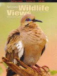 Arizona Wildlife Views Magazine - 2009-09-01