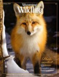 Wyoming Wildlife Magazine - 2014-02-01