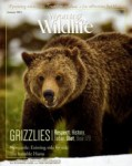 Wyoming Wildlife Magazine - 2014-01-01
