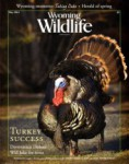 Wyoming Wildlife Magazine - 2014-05-01